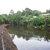 Struan Walkway wetland 1.